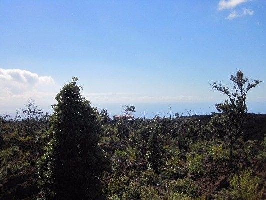 92-2416 Aloha Blvd 3, Ocean View, HI - USA (photo 2)