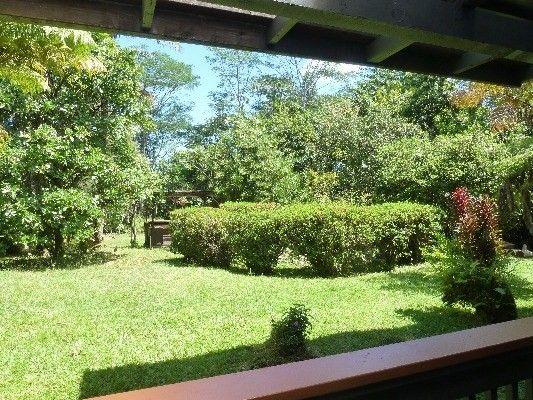 14-3615 Forest Rd 82, Pahoa, HI - USA (photo 5)
