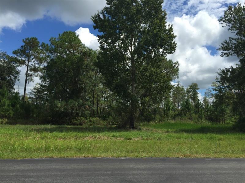 Single Family Use - WESLEY CHAPEL, FL (photo 1)