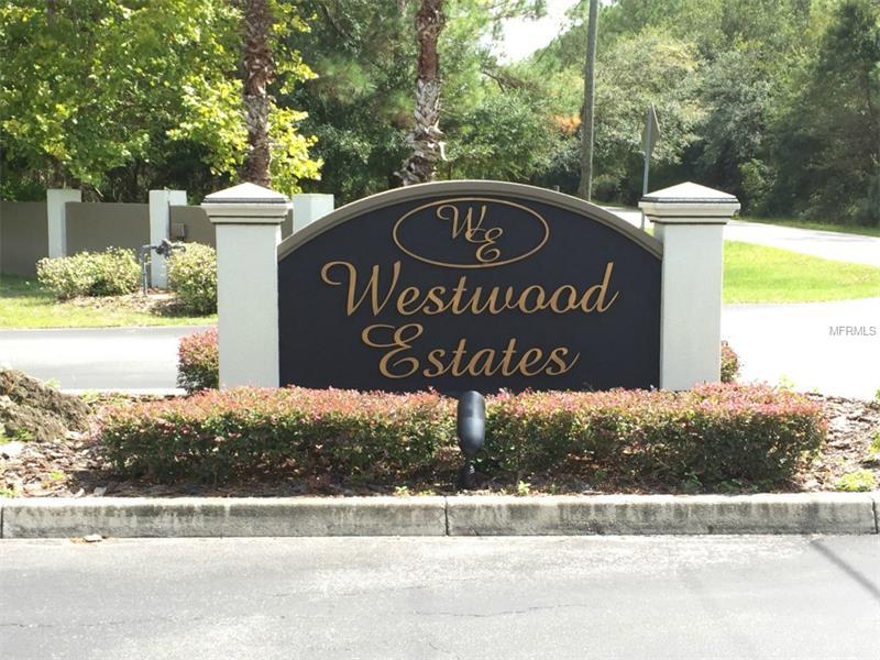 Single Family Use - WESLEY CHAPEL, FL (photo 3)