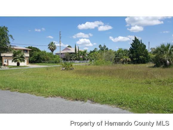 Single Family Residence - Hernando Beach, FL (photo 1)