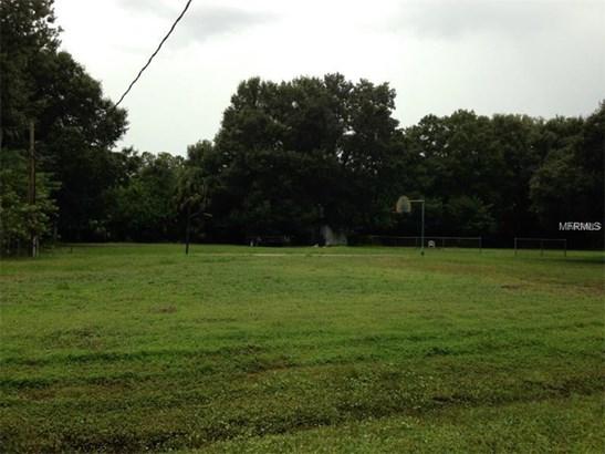 Single Family Use - LAND O LAKES, FL (photo 1)