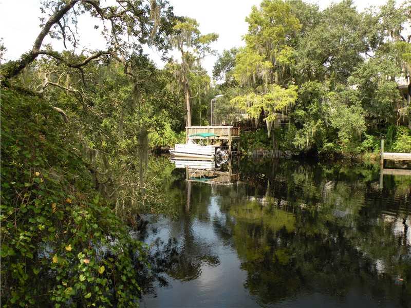 Residential Development - TEMPLE TERRACE, FL (photo 2)