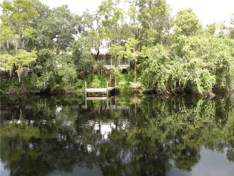 Residential Development - TEMPLE TERRACE, FL (photo 3)