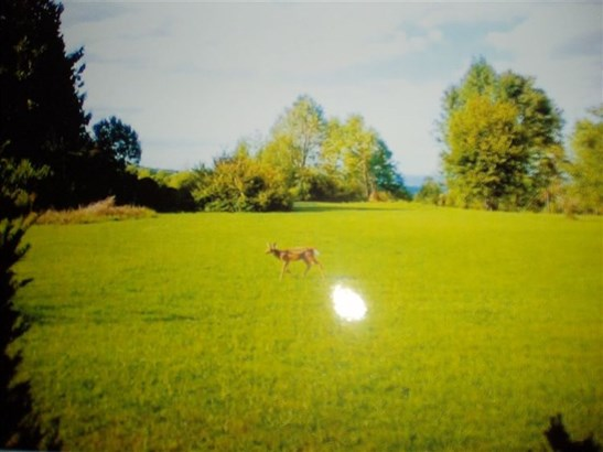 4508 Rt 166, Cherry Valley, NY - USA (photo 3)