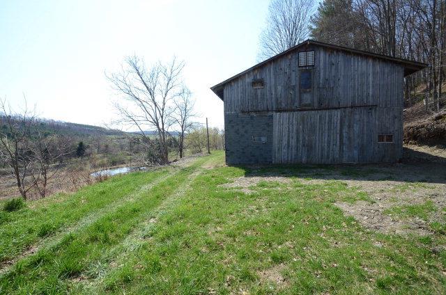 407 Watercure Hill Road, Elmira, NY - USA (photo 3)