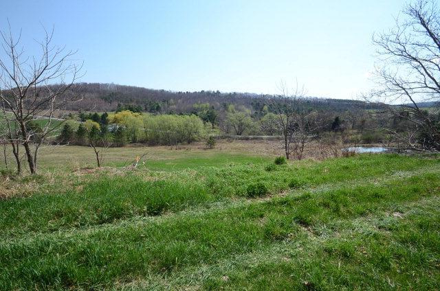407 Watercure Hill Road, Elmira, NY - USA (photo 4)