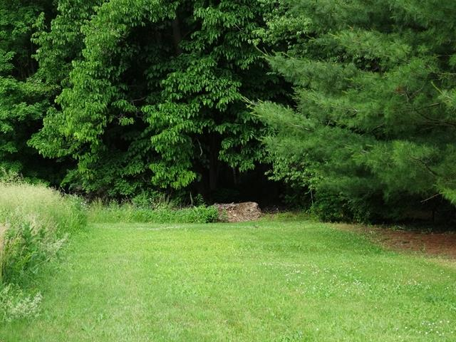 0 Riverwood Dr. Lot 45, Pine City, NY - USA (photo 1)