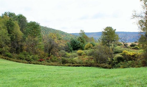 0 State Highway 8, Guilford, NY - USA (photo 1)