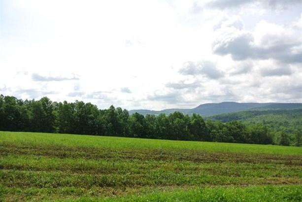 0 County Highway 32a, Cherry Valley, NY - USA (photo 2)