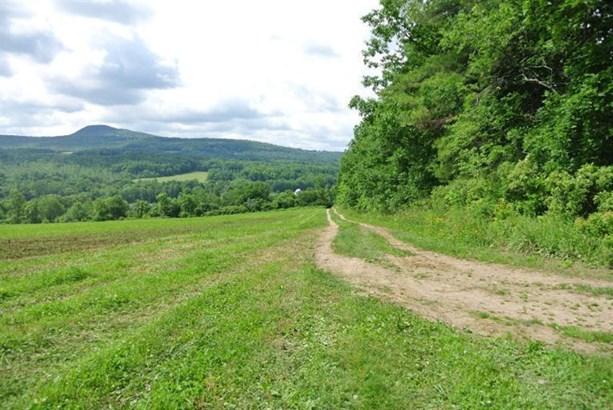 0 County Highway 32a, Cherry Valley, NY - USA (photo 3)