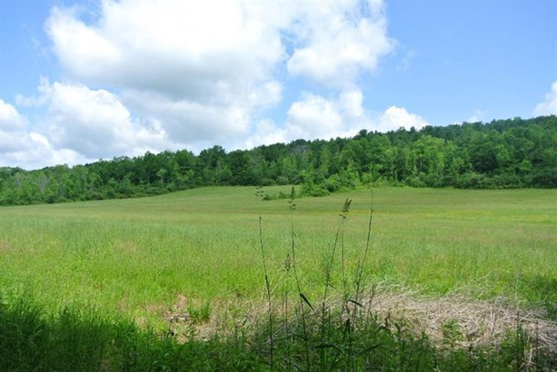 0 County Highway 32a, Cherry Valley, NY - USA (photo 4)