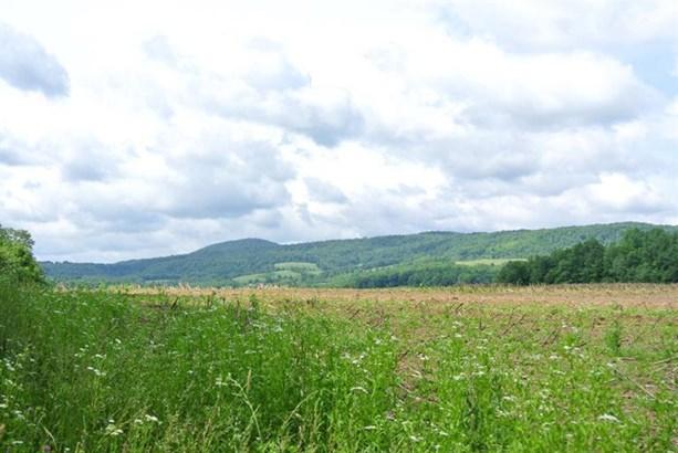 0 County Highway 32a, Cherry Valley, NY - USA (photo 5)