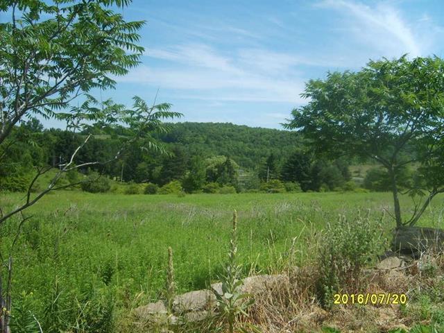 3538 Olmstead Road, Woodhull, NY - USA (photo 1)