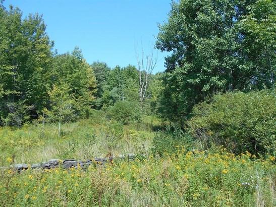 0 County Highway 6, Otego, NY - USA (photo 2)