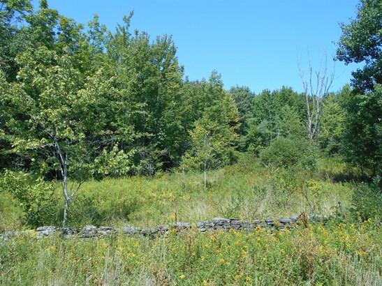 0 County Highway 6, Otego, NY - USA (photo 4)