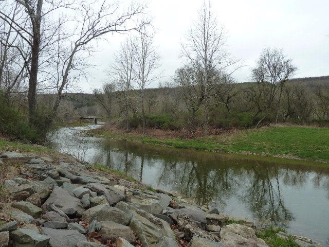 0 County Route 100, Addison, NY - USA (photo 1)