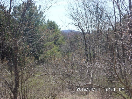 0 Oak Ledge Drive, Jefferson, NY - USA (photo 3)