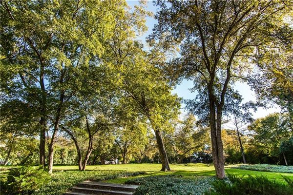 3719 Miramar Avenue, Highland Park, TX - USA (photo 2)