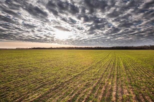 Undeveloped Acreage - Goddard, KS (photo 4)