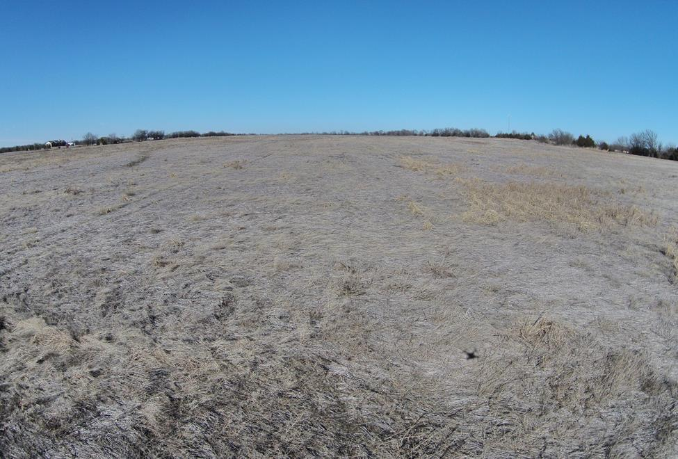 Farm - Mulvane, KS (photo 2)