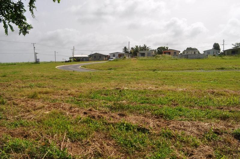 Rosegate Meadows Phase 2 Lot 8, St. John - BRB (photo 1)