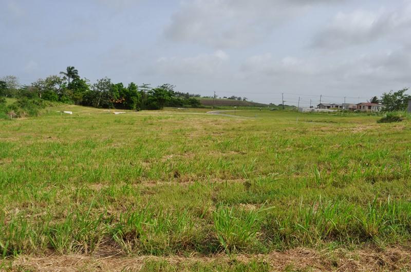 Rosegate Meadows Phase 3 Lot 17, St. John - BRB (photo 1)