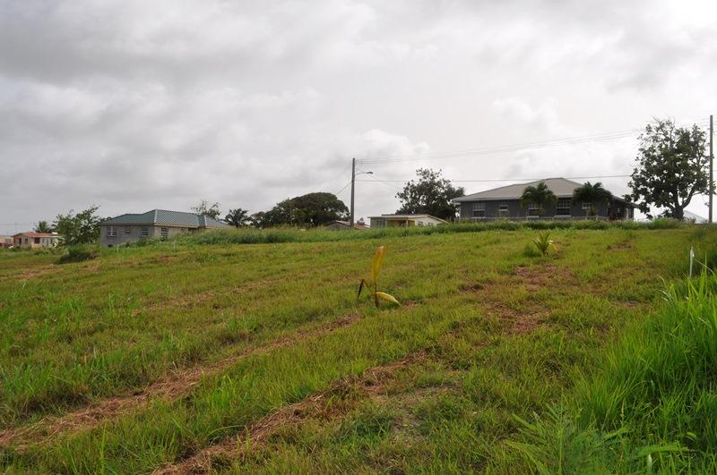 Rosegate Meadows Phase 3 Lot 17, St. John - BRB (photo 4)