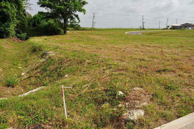 Rosegate Meadows Phase 2 Lot 9, St. John - BRB (photo 4)