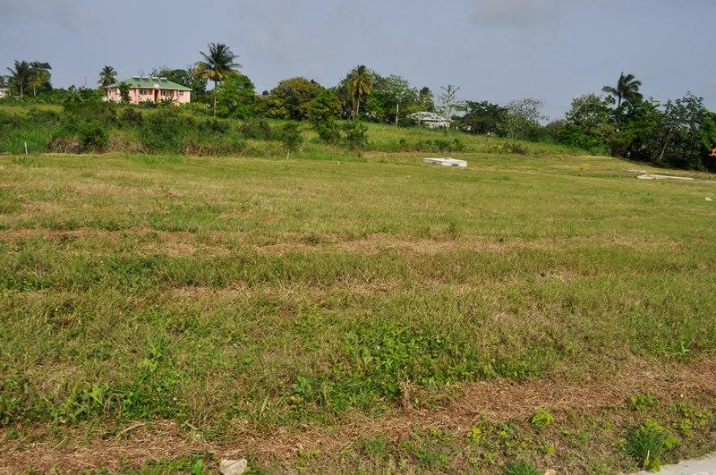 Rosegate Meadows Phase 3 Lot 16, St. John - BRB (photo 2)