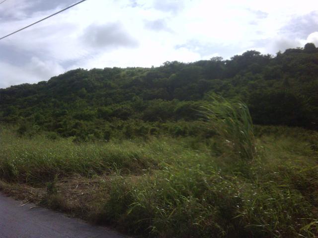 Mount Pleasant, St. Philip - BRB (photo 1)