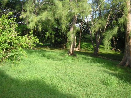 Rowans Park , St. George - BRB (photo 1)