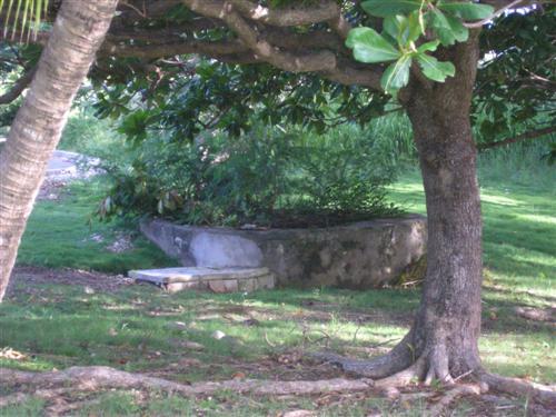 Rowans Park , St. George - BRB (photo 4)