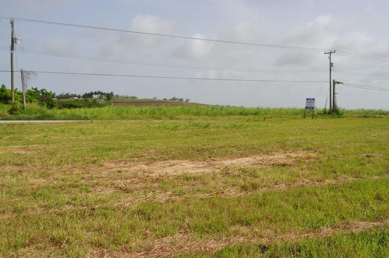 Rosegate Meadows Phase 2 Lot 3, St. John - BRB (photo 4)