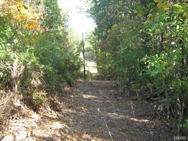 Single Family,Residential Lots, None - Wildwood, MO (photo 3)