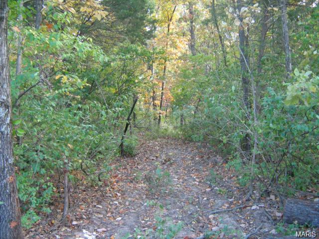 Single Family,Residential Lots, None - Wildwood, MO (photo 4)