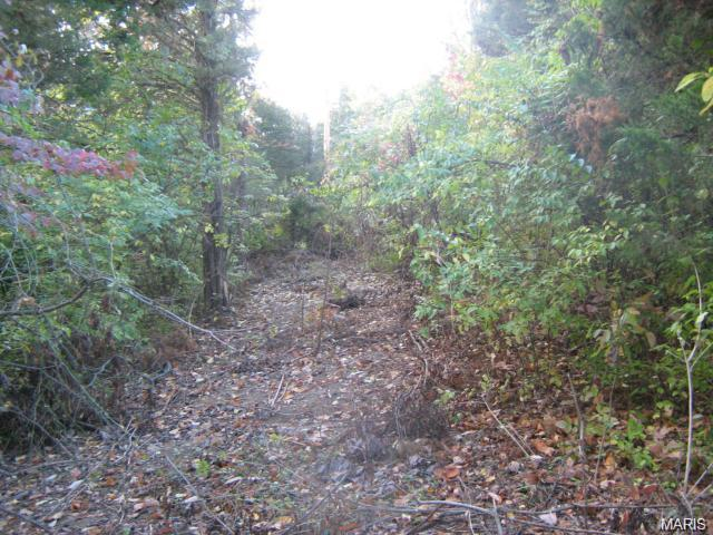 Single Family,Residential Lots, None - Wildwood, MO (photo 5)