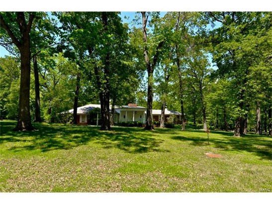 Dwelling, City,Single Family,Residential Lots - Ladue, MO (photo 3)