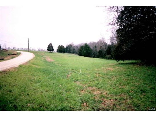 Rural,Single Family,Residential Lots, None - Cedar Hill, MO (photo 3)