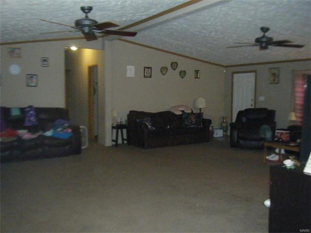 4001 Co Rd 351, Millersville, MO - USA (photo 4)