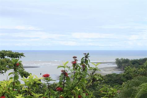 Views Beyond Words For This Front Ridge Ocean View, Uvita - CRI (photo 3)