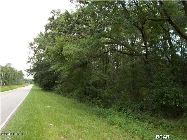 Land/Acres - Vernon, FL (photo 5)