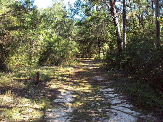 Vacant Land - Niceville, FL (photo 5)
