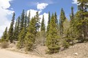 Sf/Mf/Acreage - Fairplay, CO (photo 1)