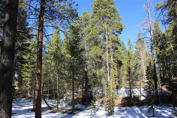Sf/Mf/Acreage - Fairplay, CO (photo 4)