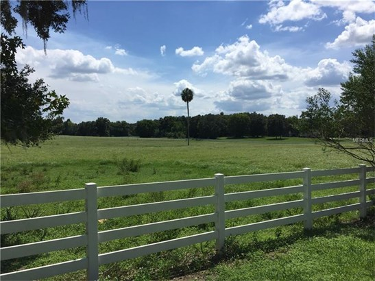 Working Ranch - OCALA, FL (photo 1)