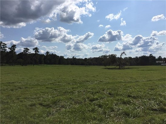 Working Ranch - OCALA, FL (photo 5)