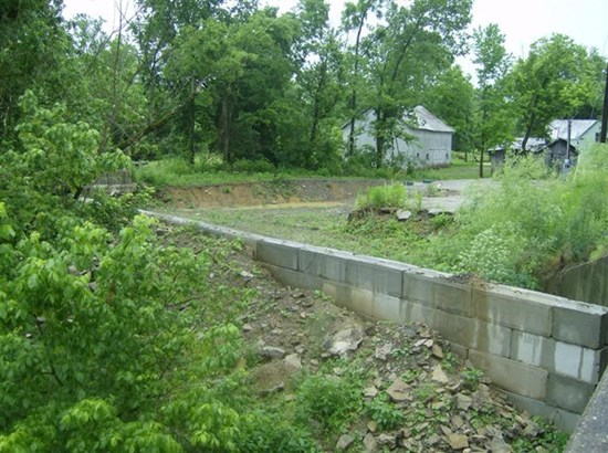 Commercial Lot - Brooksville, KY (photo 4)