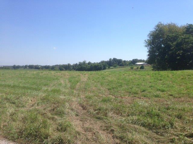 Acreage - California, KY (photo 1)