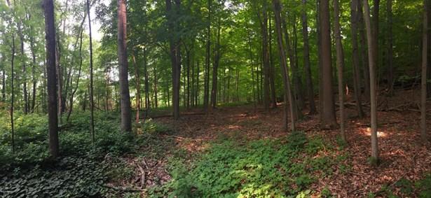 Acreage - Paw Paw, MI (photo 2)